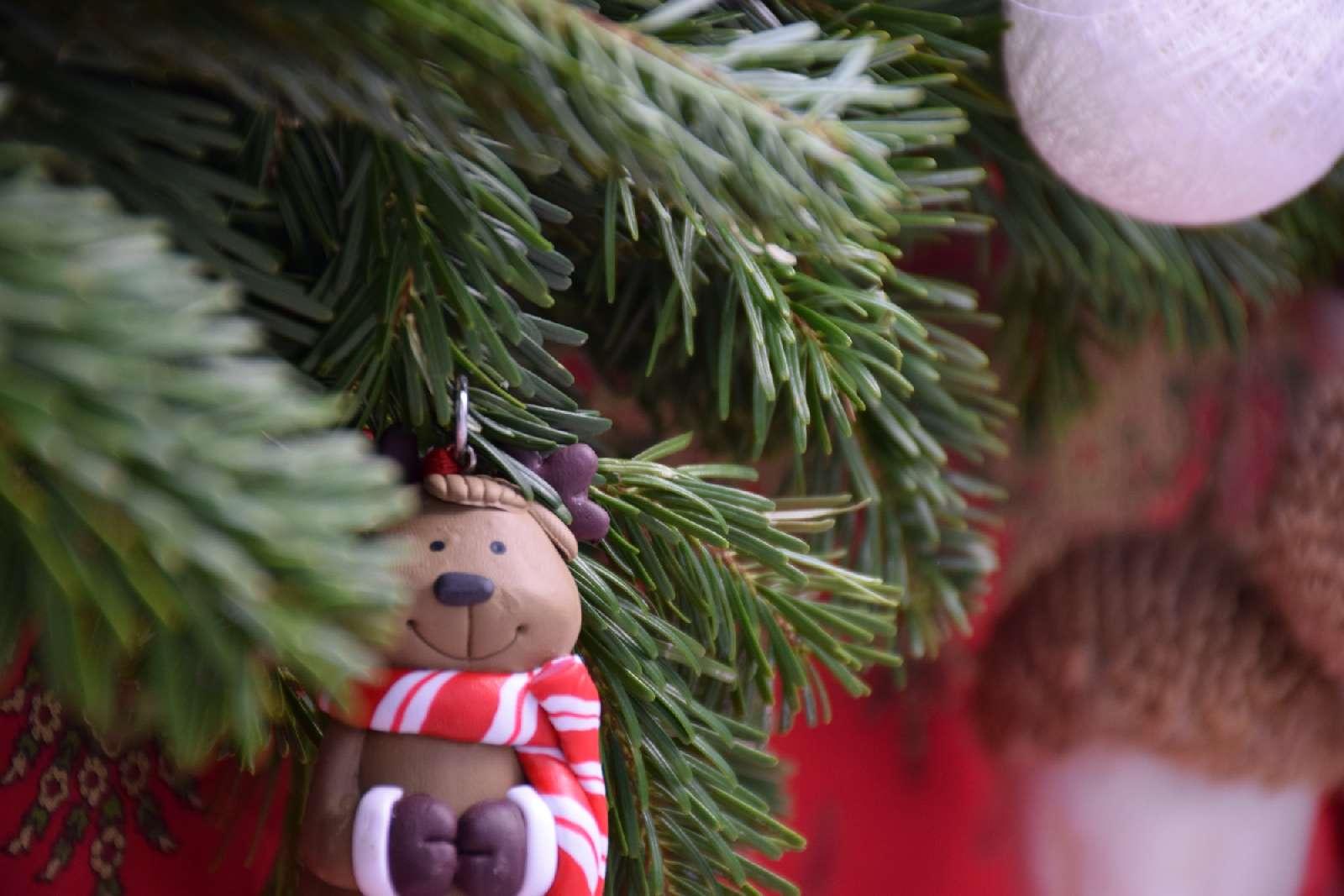 Envie de vivre un Noël magique et authentique ?