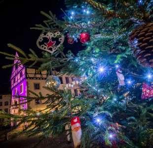 Séjour : un voyage au coeur d'un Noël alsacien