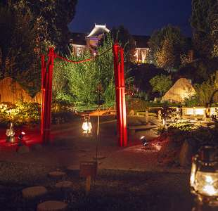 Night-enchantment in the garden