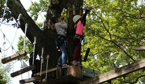 High ropes parks
